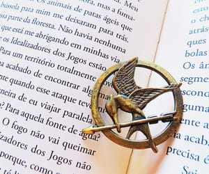 book, books, and the hunger games image