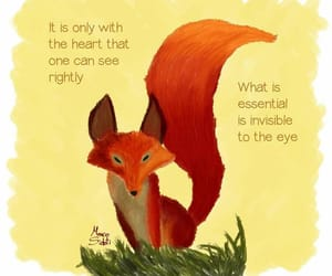 with heart, invisible to the eye, and fox quote image