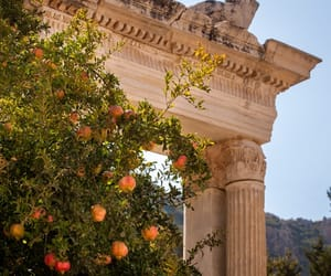 nature, Greece, and peach image