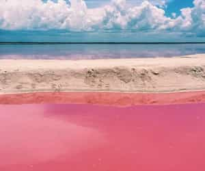 pink, beautiful, and mexico image