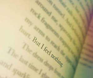book, feeling, and nothing image