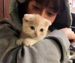 ulzzang, cat, and boy image