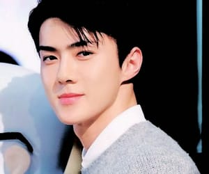 exo, exo icons, and sehun image