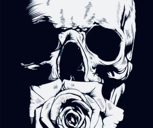 art, fantasy, and rose image