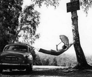 hammock, tree, and car image