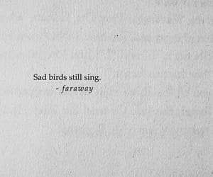 quotes, birds, and sad image
