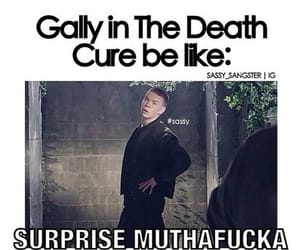 gally, funny, and surprise image