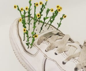 flowers, sneakers, and sunflowers image
