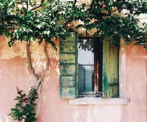 house, window, and green image