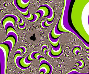 wtf and trippy image