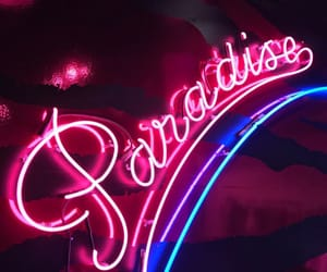 colors, paradise, and neon image