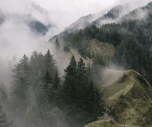 nature, explore, and fog image