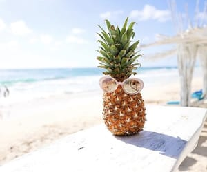 beach, pineapple, and pose image