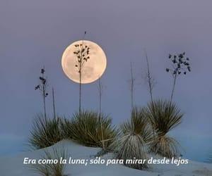 frases, poem, and frases en español image