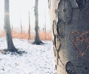 heart, love, and snow image