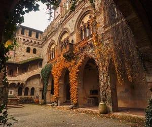 travel, autumn, and orange image