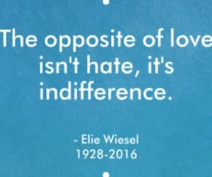hate, indifference, and quote image
