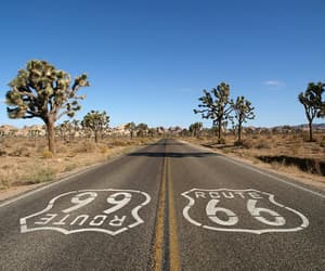 route 66, desert, and trees image