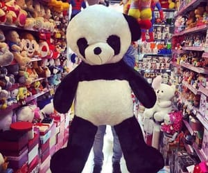 lovely, panda, and cute image