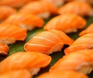 food, orange, and seafood image