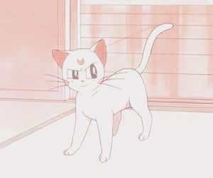 anime, cat, and pastel image