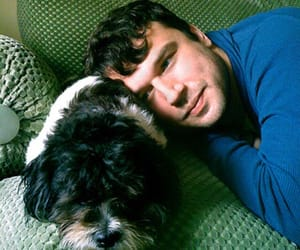 dogs, max bemis, and animals image