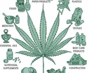 hemp, quotes, and weed image