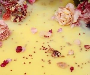 couleur, picture, and fleur image