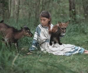 animal, child, and cub image
