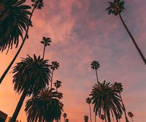 la, los angeles, and sunset image