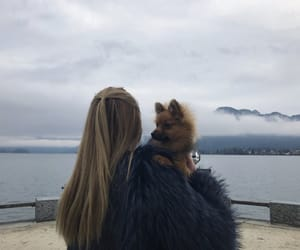 blogger, blonde, and dog image
