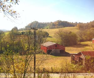 barn, nature, and country image