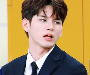 gif, ong, and cute image