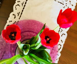 flower, tulip, and loveit image