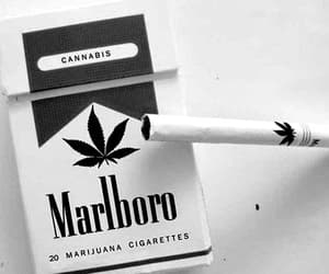 cigarette, weed, and marlboro image