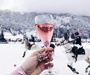 champagne, cheers, and february image