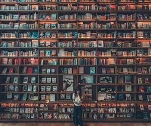 amazing, art, and books image