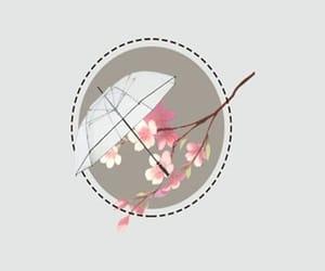 flower, japan, and header image