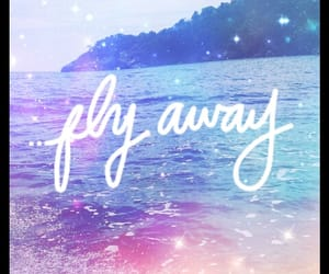 away, praia, and fly image