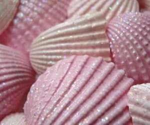 pink, shell, and glitter image