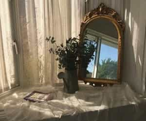 aesthetic, mirror, and plants image