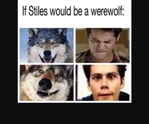 werewolf, teen wolf, and dylan o'brien image