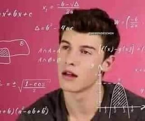 meme and shawn mendes image