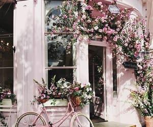 pink, pink bike, and pretty image