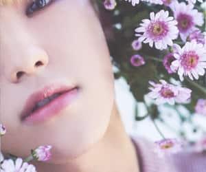 Seventeen, hoshi, and soonyoung image