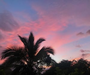 beautiful, pink, and sunset image