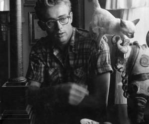 james dean, cat, and old image