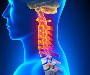 chiropractic, lower back pain treatment, and neck pain treatment image