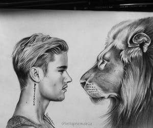 animals, art, and celebrity image