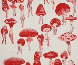 art, mushrooms, and red image